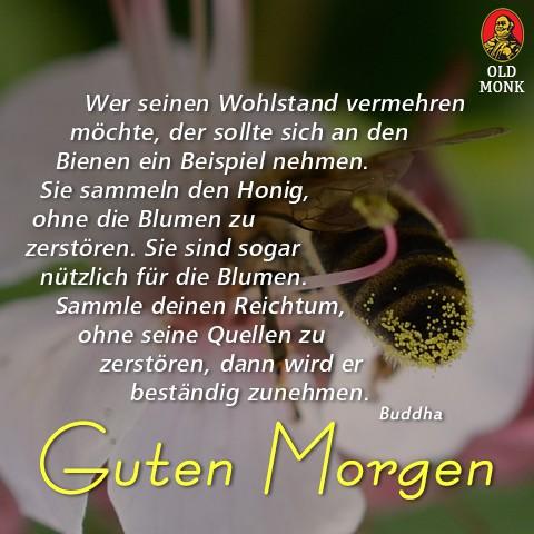 guten_morgen_5